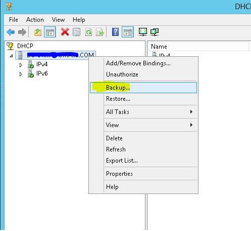 backup DHCP server backup