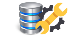 Repairing DHCP database